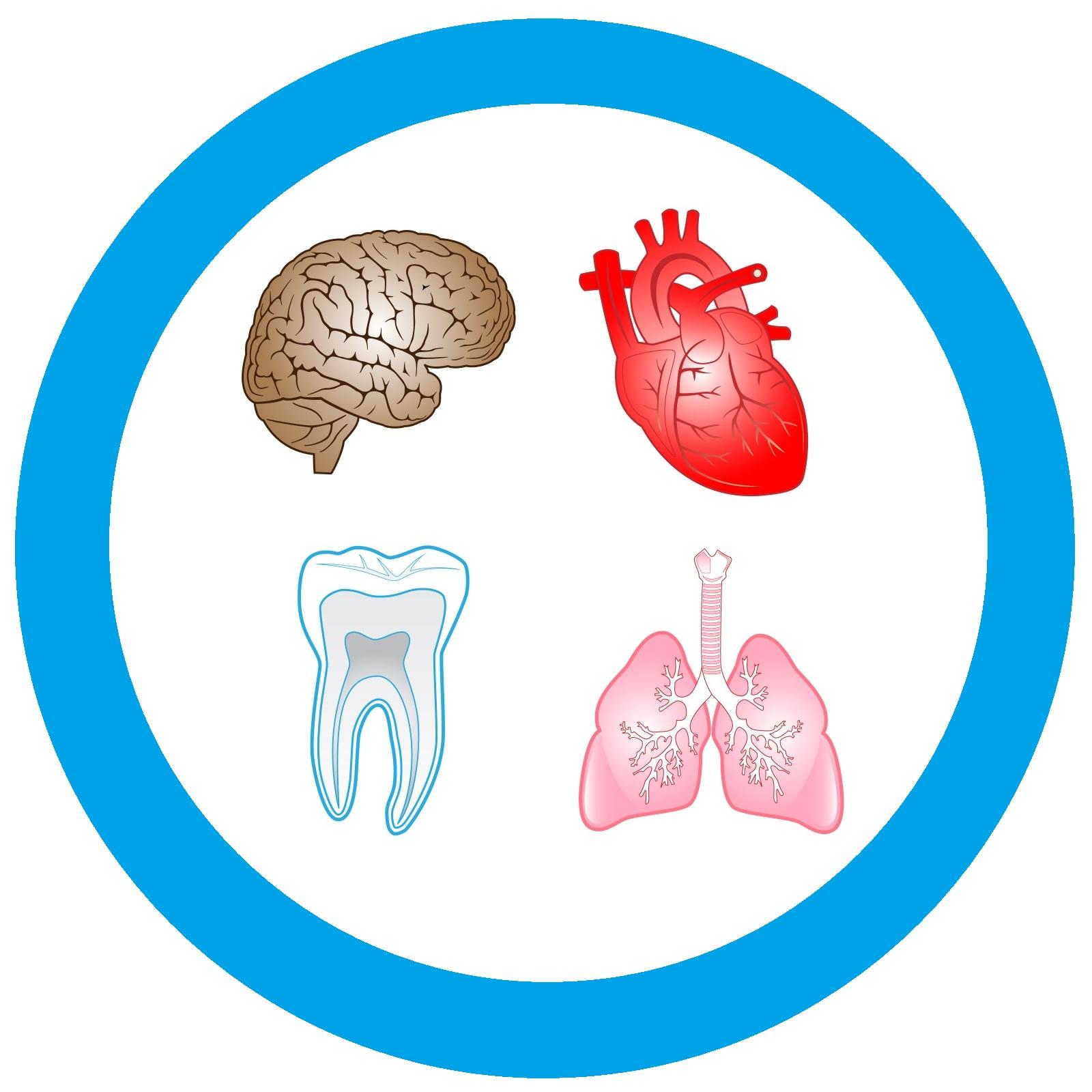 دندانپزشکی و دیابت